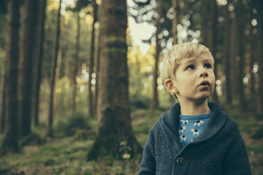 Little boy standing in forest looking up in wonder - MFF002427