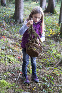 Little girl with basket collecting fir branches in the woods - SARF002231