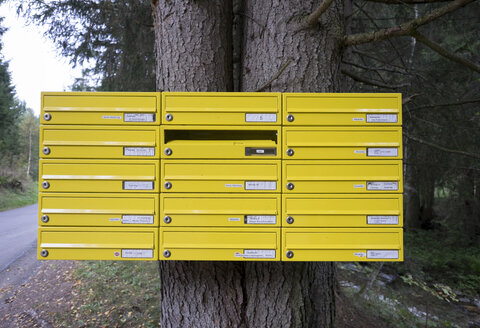 Austria, Styria, Sankt Lambrecht, mailboxes for isolated farms at tree trunk - HL000933