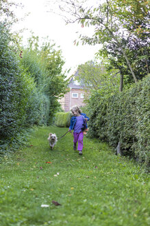 Little girl running on a meadow with her mongrel - JFEF000735