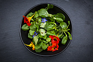 Bowl of lamb's lettuce with blossoms of borage and Indian cress - LVF004060