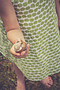 Little girl's hand holding vineyard snail - LVF004079