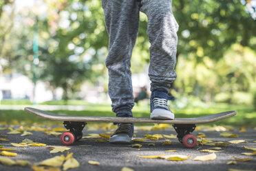 Boy with skateboard in park in autumn - DEGF000561