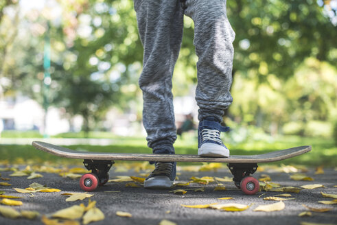 Boy with skateboard in park in autumn - DEGF000561