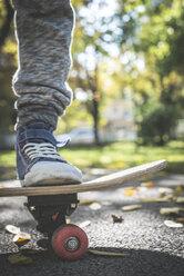 Boy with skateboard in park in autumn - DEGF000567