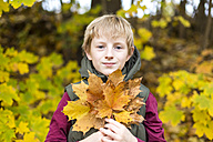 Portrait of boy holding bunch of autumn leaves - SARF002262
