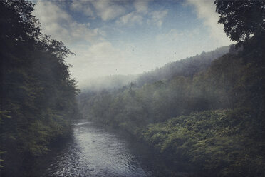 Germany, Wuppertal, morning fog above river Wupper and forest - DWIF000634