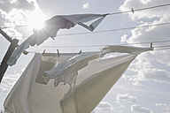 Laundry hanging on clothesline in sunlight - RIBF000346