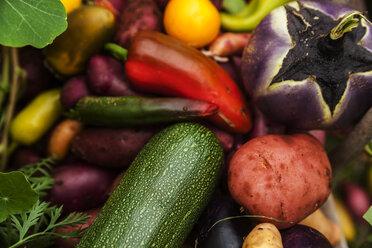 Different organic vegetables - TCF004917