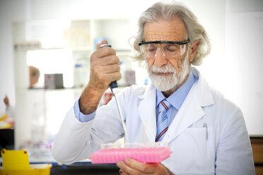 Senior professor filling sample glasses in laboratory - RMAF000185