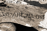 Canada, Vancouver Island, Saying 'We are all one' carved in wood - TMF000045