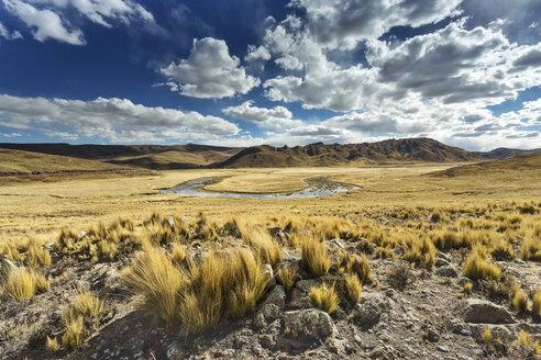 Peru, Arequipa, Altiplano, Pasto Grande - FPF000069
