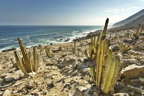 Peru, Arequipa, Ocona, coastal landscape at Panamericana Sur S1 - FPF000075