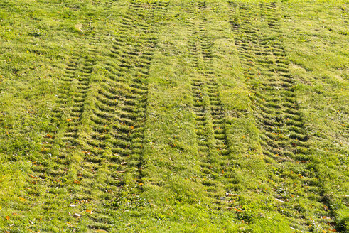 Tyre tracks on a meadow - VIF000445