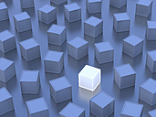 One white cube, blue cubes, 3D-Rendering - UWF000657