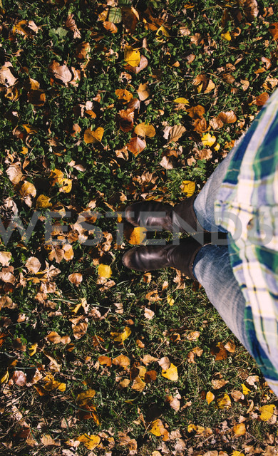 Partial view of woman standing on a meadow covered with autumn leaves - GEMF000469
