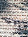Shadows On Brick Wall - BZF000271