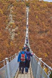Germany, Rhineland-Palatinate, Hunsrueck, Saar-Hunsrueck-Steig, Swing Bridge Geierlay - BSC000499