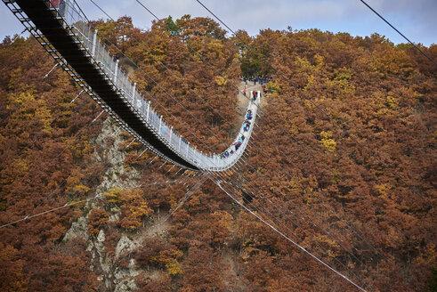 Germany, Rhineland-Palatinate, Hunsrueck, Saar-Hunsrueck-Steig, Swing Bridge Geierlay - BSCF000502