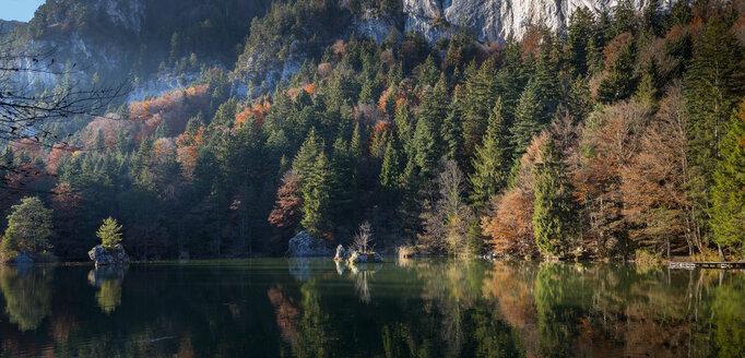 Austria, Tyrol, Berglsteinersee in autumn - MKFF000265
