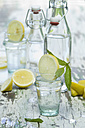 Slice of lemon and mint in water glass, bottle - ASF005760