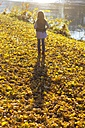 Back view of little girl standing on autumn leaves at riverside - YFF000482
