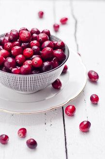 Bowl of fresh cranberries - CZF000228