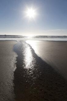 Canada, Vancouver Island, Longbeach, Beach and Pacific Ocean - TMF000066