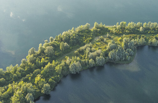 Germany, Hildesheim District, aerial view of trees at lakeshore - PVC000712