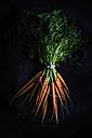 Bunch of carrots - KSWF001679