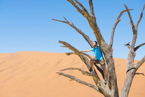 Namibia, Namib Desert, man on dead tree in Deadvlei - GEMF000523