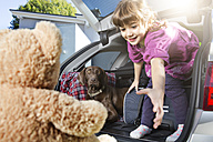 Smiling girl in car boot with dog looking at teddy bear - FKF001615