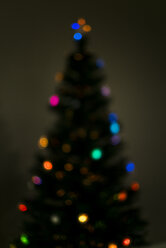 Blurred Christmas tree in the dark - JPF000076