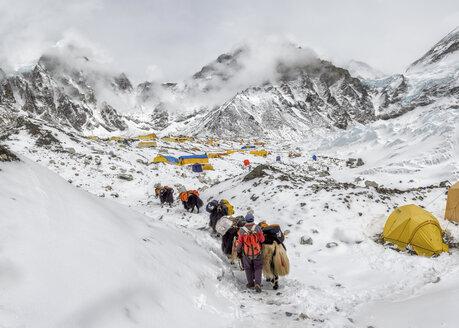 Nepal, Himalayas, Khumbu, Everest Region, Everest Base Camp - ALR000199