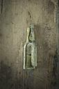 Broken old glass bottle on wood - AS005782