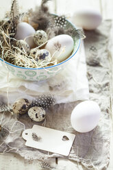 Eggs and quail eggs in bowl with tag - SBDF002545