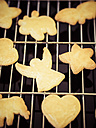 Home-baked Christmas cookies on a grid - KRPF001663