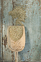 Buckwheat grains on wooden spoon, on wood - ASF005789