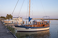 Germany, Zingst, moored yachts at Zingster Strom - SIEF006894
