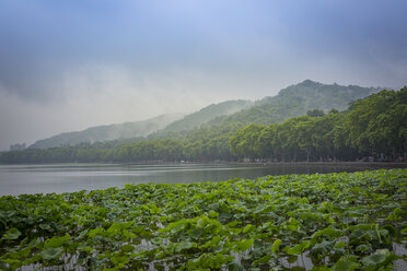China, Zhejiang, Hangzhou, Fog rising from the mountains at the west lake - NKF000422