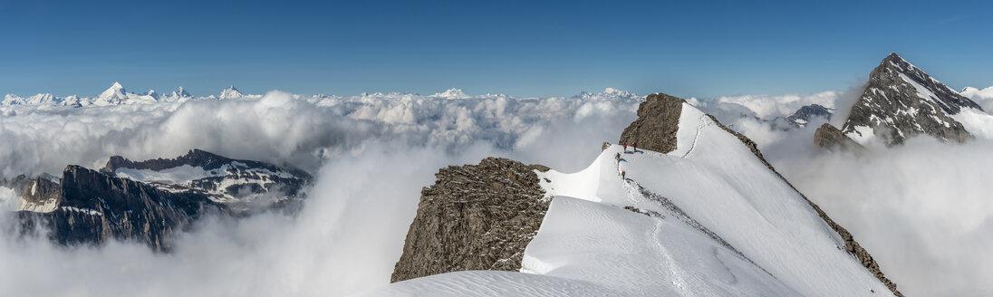 Switzerland, Western Bernese Alps, Gasterntal, Balmhorn, Zackengrat - ALRF000252