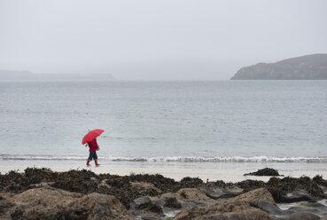 UK, Scotland, Isle of Skye, walking girl with umbrella at rainy beach - JBF000254