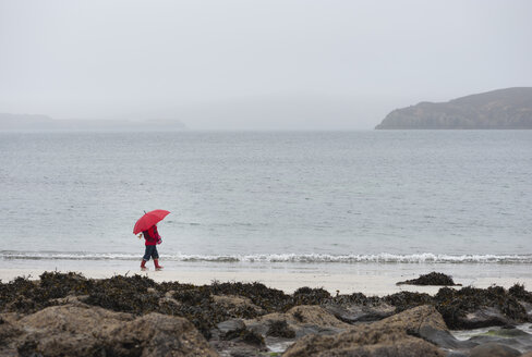 UK, Scotland, Isle of Skye, walking girl with umbrella at rainy beach - JBF000254