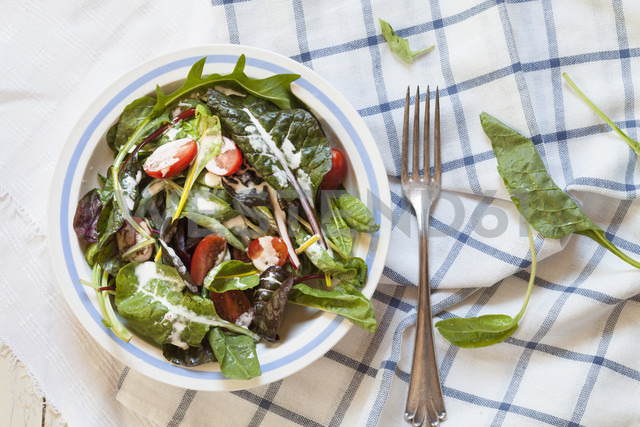 Mixed green salad with yoghurt sauce - SBDF002590