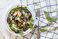 Mixed green salad with yoghurt sauce - SBDF002590