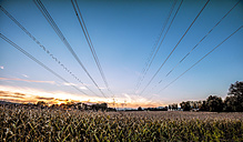 Austria, Carinthia, field and power pylons in the morning, panorama - DAWF000367