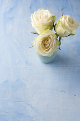 Three white roses in a flower vase on light blue ground - MYF001283