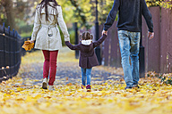 Family walking hand in hand in autumnal park - HAPF000088