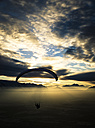 Paraglider at sunset - STC000110