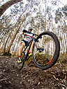 Mountain biker driving in the forest - MGOF001204